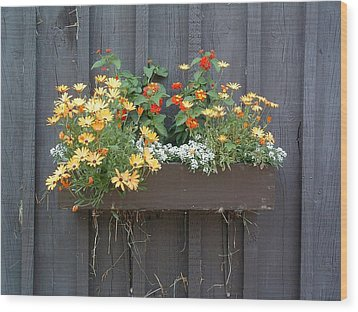 Flowers Summer Blooms On The Barn Wood Print