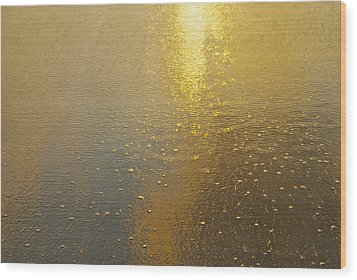 Flowing Gold 7646 Wood Print by Michael Peychich