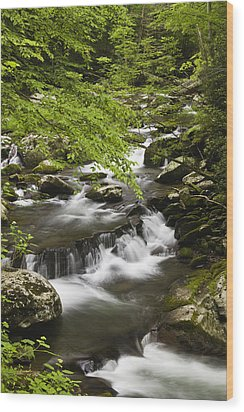 Flowing Mountain Stream Wood Print by Andrew Soundarajan