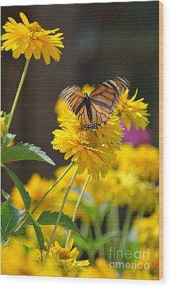 Fluttering Monarch Butterfly Wood Print by Lila Fisher-Wenzel