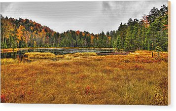 Fly Pond On Rondaxe Road Wood Print by David Patterson