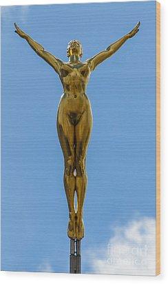 Flying Angel Wood Print by Donald Davis