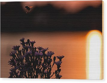 Wood Print featuring the photograph Flying Home by Tom Gort