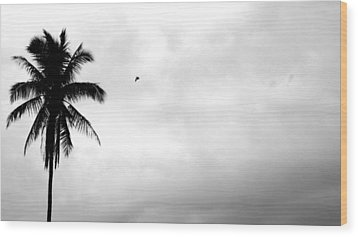 Flying-off From Palm Tree Wood Print by Rosvin Des Bouillons