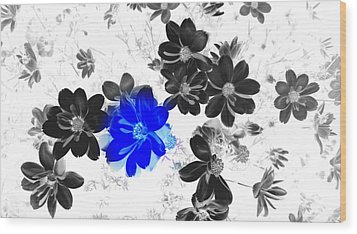 Focal Black And White Beauty Wood Print by Kim Galluzzo Wozniak