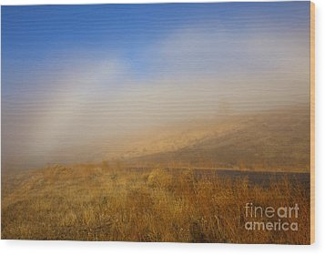 Fog Bow At Lookout Point Wood Print by Mike  Dawson