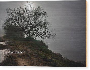 Fog Day Wood Print by Edgar Laureano