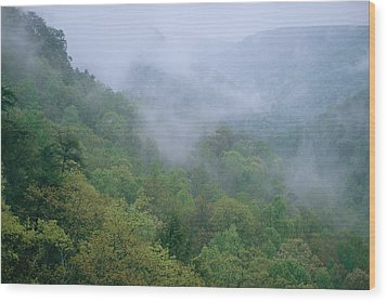 Fog Drifts Across A Cove In Tennessee Wood Print by Stephen Alvarez