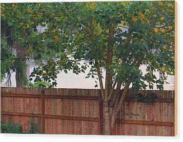 Fog In Olympia II Wood Print by Jeanette C Landstrom