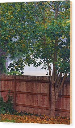 Fog In Olympia Wood Print by Jeanette C Landstrom
