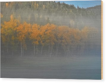Wood Print featuring the photograph Foggy Autumn Morning by Albert Seger