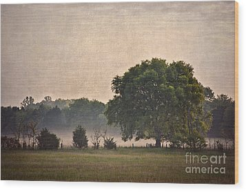 Wood Print featuring the photograph Foggy Country Morning by Cheryl Davis