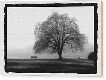 Foggy Day H-4 Wood Print by Mauro Celotti