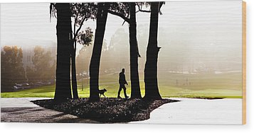 Foggy Day To Walk The Dog Wood Print by Harry Neelam
