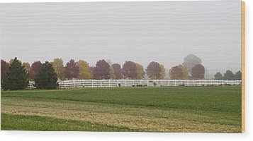 Foggy Fall Wood Print by Joel Witmeyer
