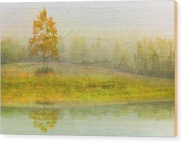 Foggy Meadow Wood Print by Debra and Dave Vanderlaan