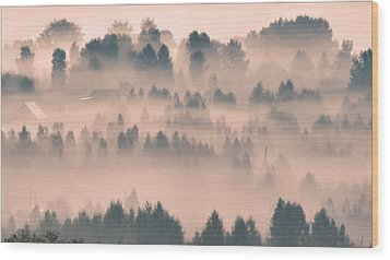 Foggy Morning 21 Wood Print by Vladimir Kholostykh