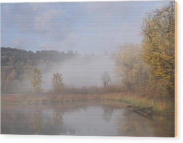 Foggy Morning  Wood Print by Doris Potter