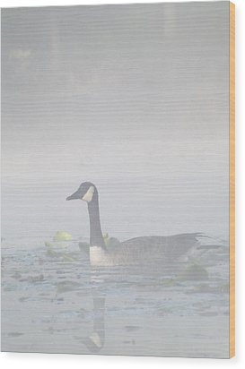 Wood Print featuring the photograph Foggy Morning Goose by Gerald Strine