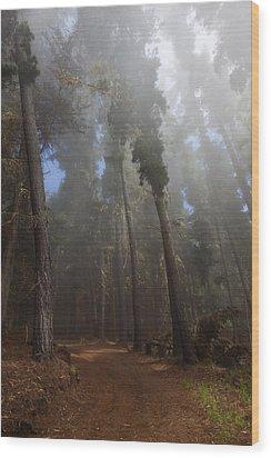 Foggy Poli Poli Wood Print by Jenna Szerlag