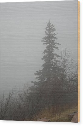 Foggy Sentinel Wood Print by Skip Willits