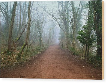 Foggy Woodland Trail Wood Print by Julie L Hoddinott