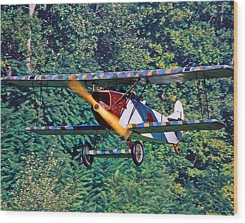 Fokker Dvii 02 Wood Print by Jeff Stallard