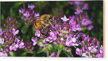 Follow The Bee Wood Print by Terry Elniski