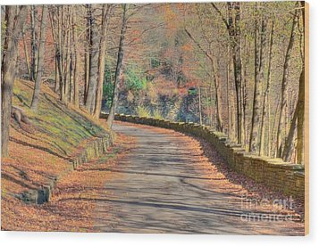 Follow The Path Wood Print by Kathleen Struckle