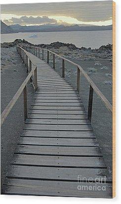 Footbridge On Volcanic Landscape Wood Print by Sami Sarkis