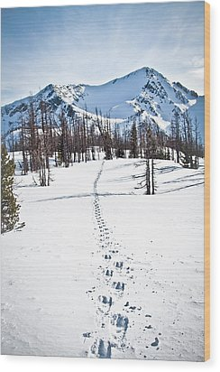 Footprints Leads To Frosty Mountain Wood Print by Christopher Kimmel
