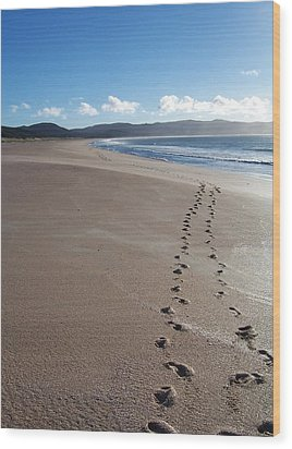 Wood Print featuring the photograph Footsteps In The Sand by Peter Mooyman
