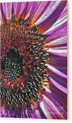 For Ana Wood Print by Gwyn Newcombe
