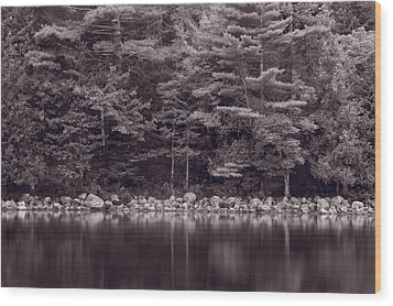 Forest At Jordan Pond Acadia Bw Wood Print by Steve Gadomski