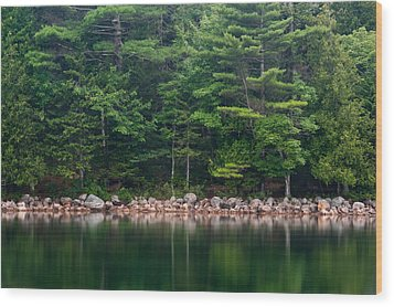 Forest At Jordan Pond Acadia Wood Print by Steve Gadomski