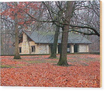 Forest Field House 1 Wood Print by Cedric Hampton