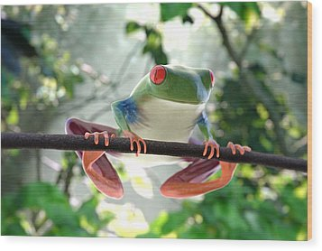 Forest Frog Wood Print by Ilendra Vyas