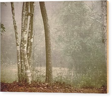 Forest In Fog Wood Print by Robert Brown