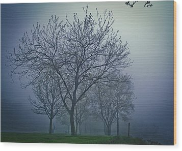Forest Mist Wood Print by Jason Naudi Photography