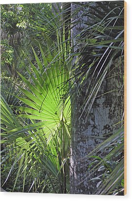 Forest Palm Wood Print