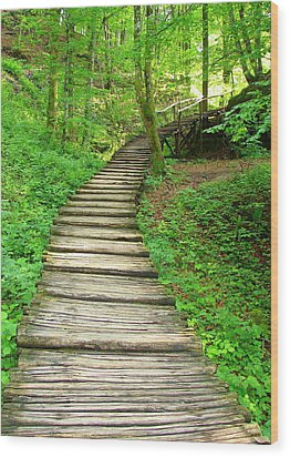 Wood Print featuring the photograph Forest Path by Ramona Johnston