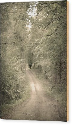 Forest Path Wood Print by Svetlana Sewell