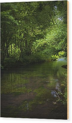 Forest River Wood Print by Svetlana Sewell
