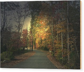 Wood Print featuring the photograph Forest Road 2 by Elizabeth Coats