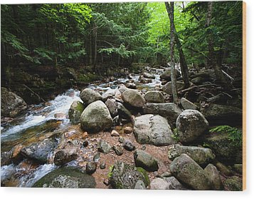 Forest Stream Wood Print