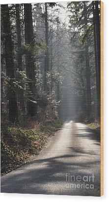 Forest Street 1 Wood Print by Bruno Santoro