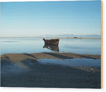 Wood Print featuring the photograph Forgotten Boat Wreck Near Motueka by Peter Mooyman
