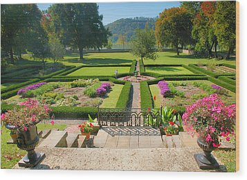 Formal Garden I Wood Print by Steven Ainsworth