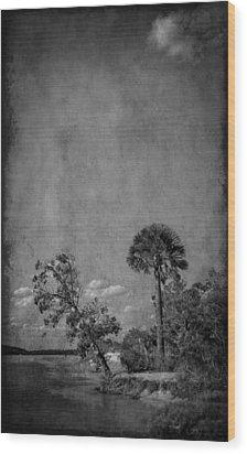 Fort George River Wood Print by Mario Celzner