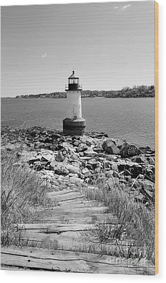 Fort Pickering Light Wood Print by Catherine Reusch Daley